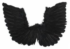 Tomfoolery Small Wings 50cm x 40cm