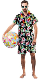 Interalia Adult's Aloha Hawaiian Man Costume