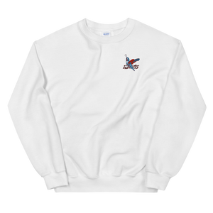 Illustri Forgotten Crew neck Sweatshirt (White)