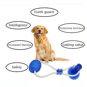 Multifunction Pet Molar Bite Toy-Limited Time 50% Off
