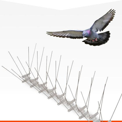 Affordable and humane anti-pigeon spikes from Bond Online Products.