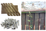 Anti Climb Spikes - Wall Spikes - Pack of 10 x 45cm Spike Strips - Fixings Set