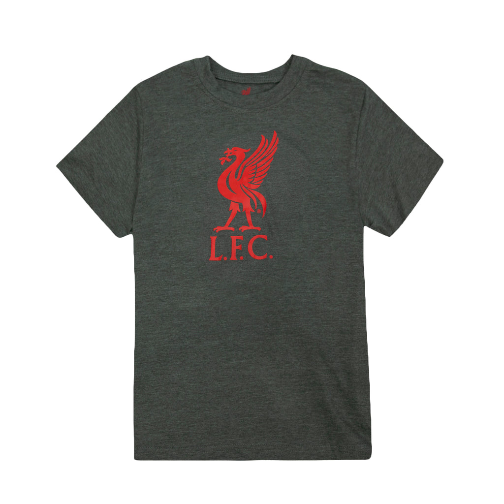 Liverpool FC Liverbird Logo Youth T-Shirt - Dark Grey by Icon Sports