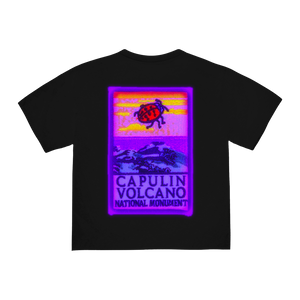 """GREAT BASIN"" T-SHIRT - BLACK/REFLECTIVE"