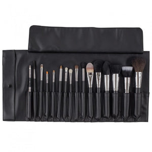 16 Piece Professional Brush Set