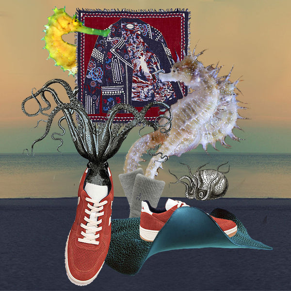 sustainable fashion collage ocean creatures veja sneakers