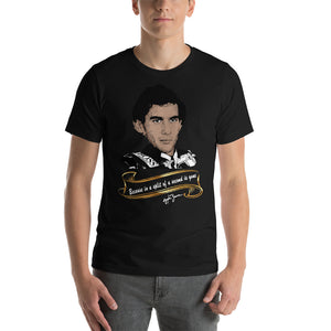 "Homage to Ayrton Senna "" Because in a split of a second is gone"""