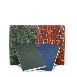 Field Notes - End Papers Notebooks