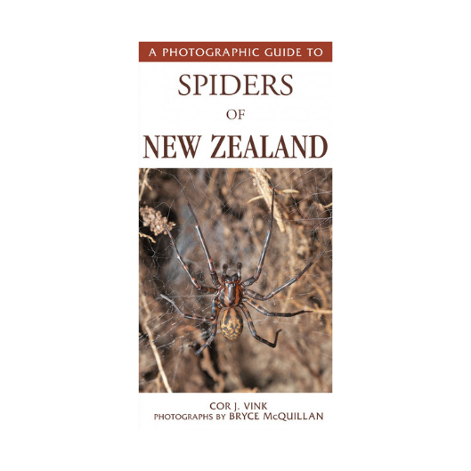 Photographic Guide to Spiders of New Zealand