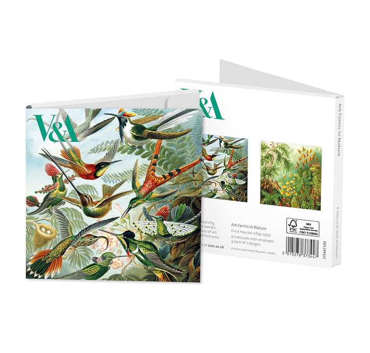 Art Forms in Nature Notecard Set 4x2