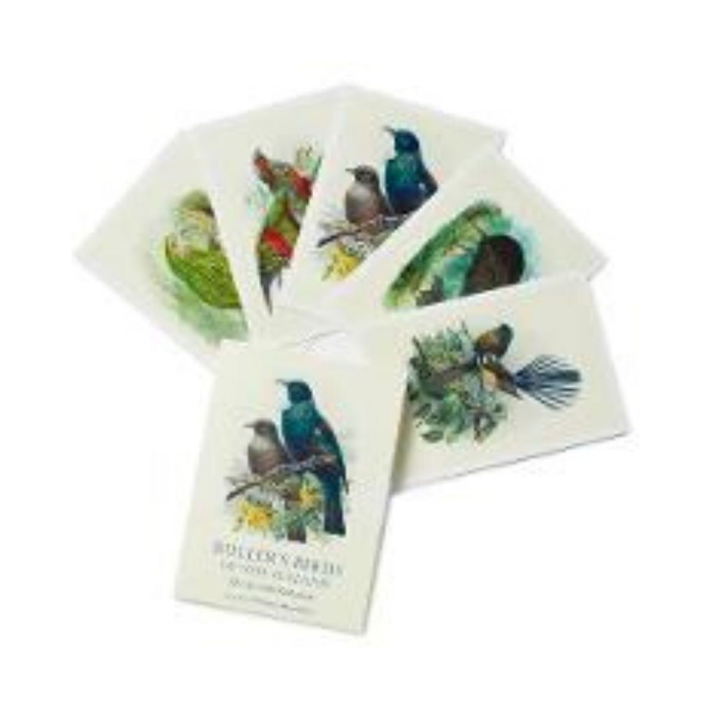 Bullers Birds of New Zealand Boxed Card Set