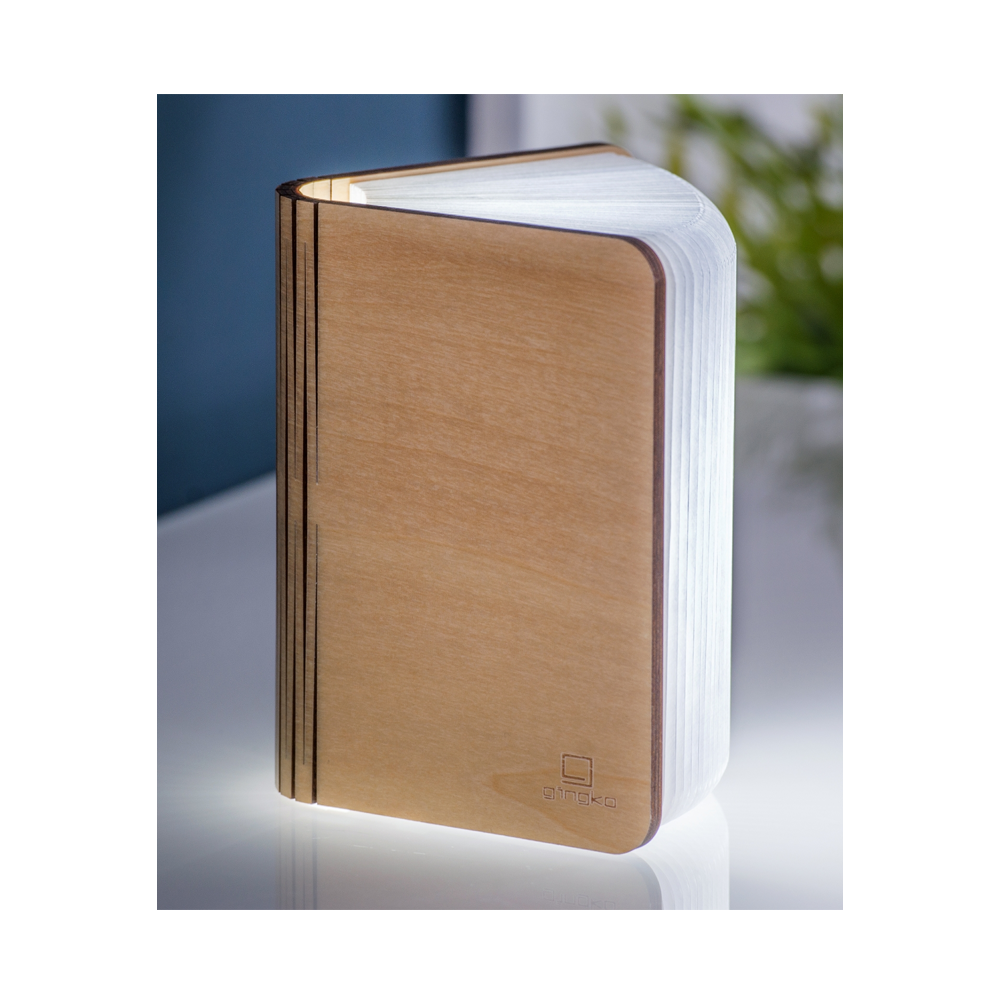 MAPLE LARGE SMART LED LIGHT BOOK