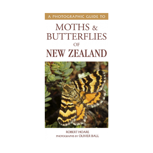 Photographic Guide to Moths and Butterflies of New Zealand
