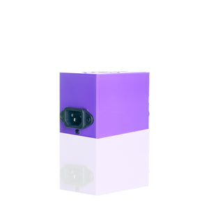 Disorderly Conduction - Budget Micro Enail Kit - Purple
