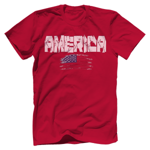 Print Brains Men's T-Shirt Red / XS / Bella + Canvas US Made Cotton Crew AMERICA Hulk Font Distressed Flag Tee (6 Variants)