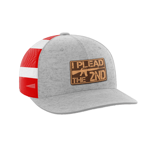 Print Brains Snapback Hat I Plead The 2nd Leather Patch Hat / Heather Gray/Flag / One Size I Plead The 2nd Leather Patch Hat (6 Variants)