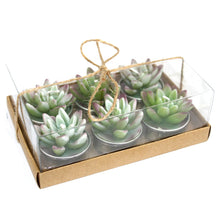 Load image into Gallery viewer, Set of 6 Agave Cactus Tealights in Gift Box-Home-SmartMugCo