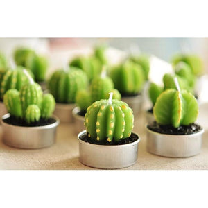 Set of 6 Agave Cactus Tealights in Gift Box-Home-SmartMugCo