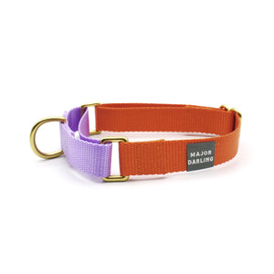 martingale collar / orange + lilac