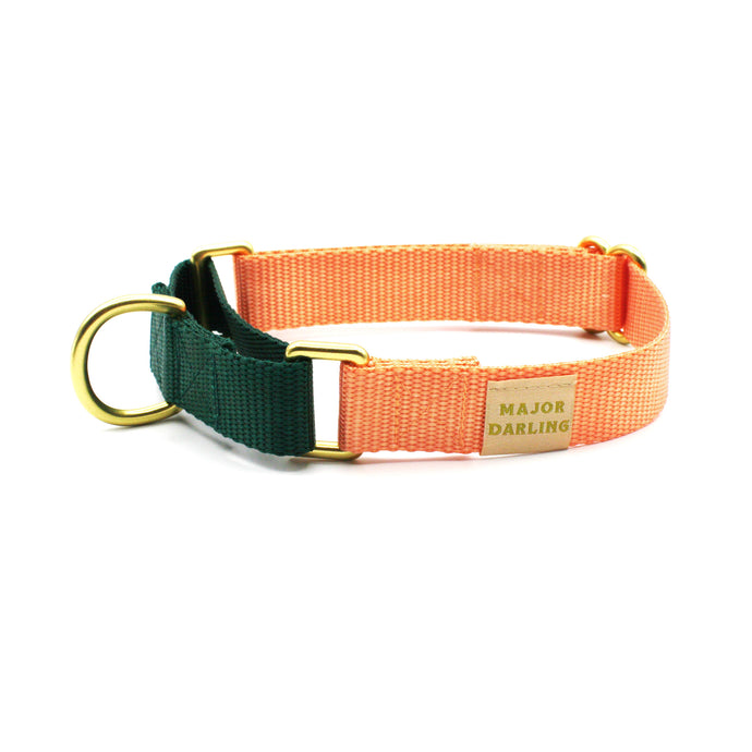 martingale collar / peach + evergreen