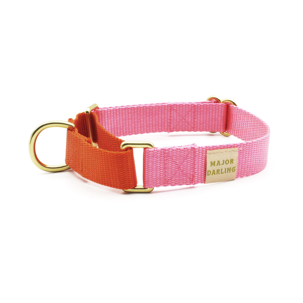 martingale collar / pink + orange