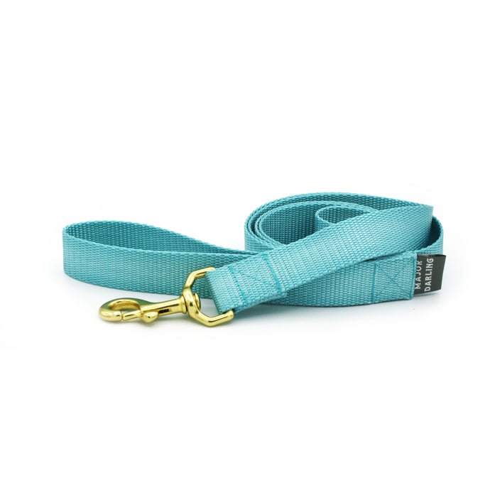 basic leash / ice blue