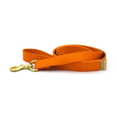 basic leash / orange