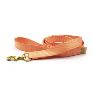 basic leash / peach