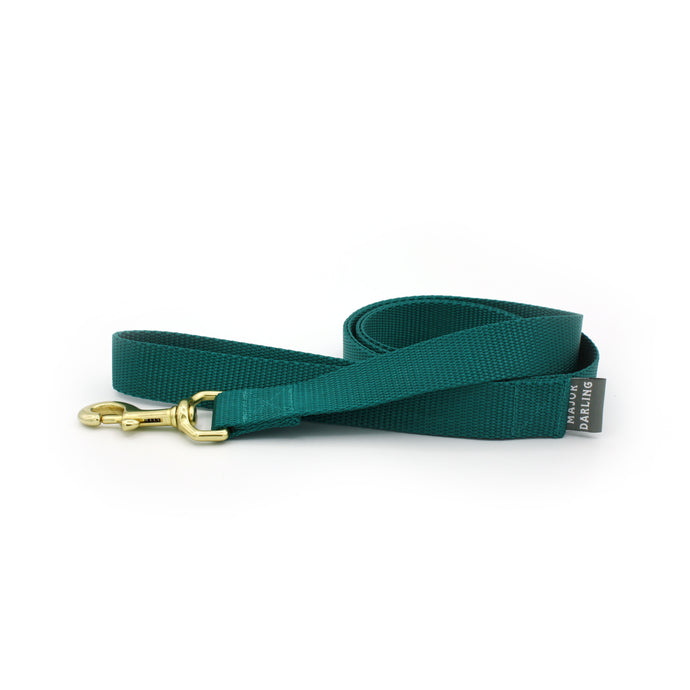 basic leash / teal