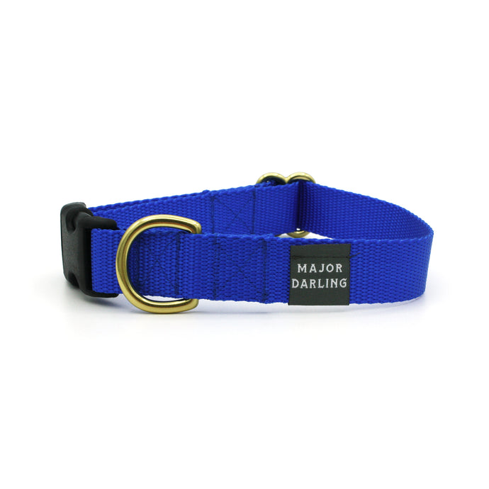 side-release buckle collar / cobalt