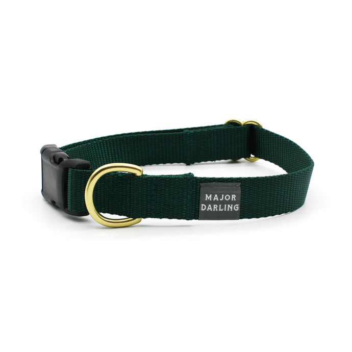side-release buckle collar / evergreen