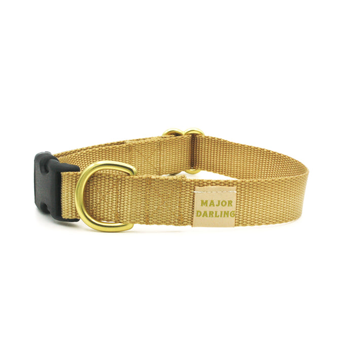 side-release buckle collar / gold