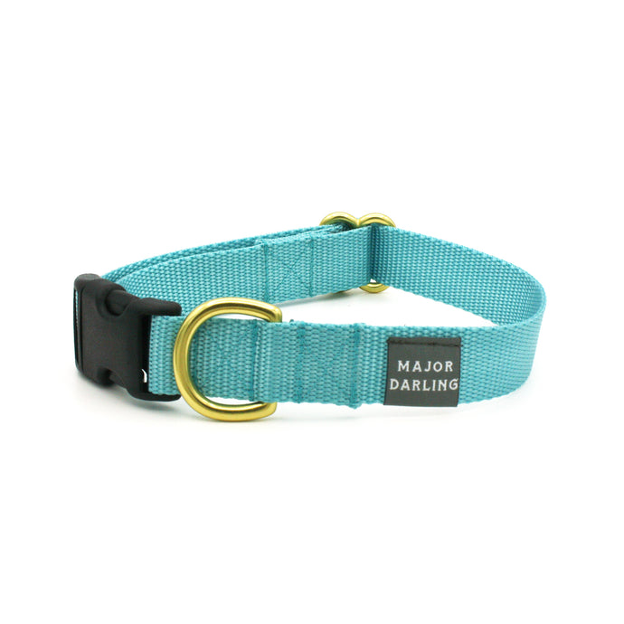 side-release buckle collar / ice blue