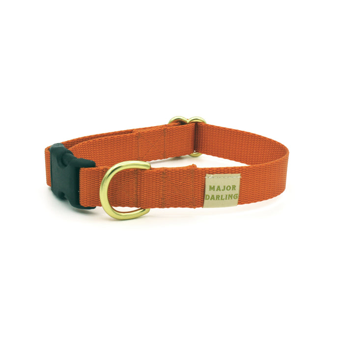 side-release buckle collar / orange