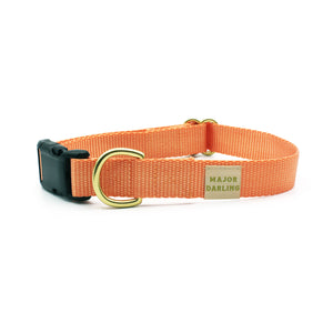 side-release buckle collar / peach