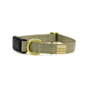 side-release buckle collar / silver