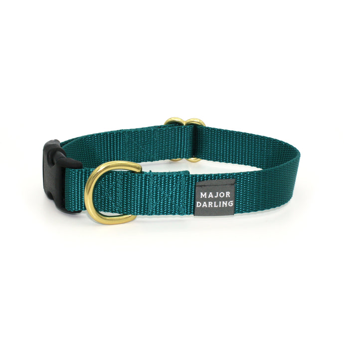 side-release buckle collar / teal