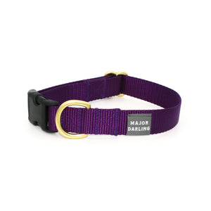side-release buckle collar / violet