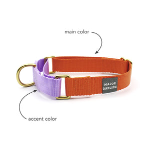 martingale collar / CUSTOM COLORS