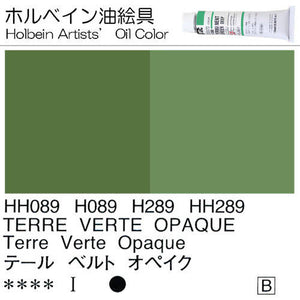 Holbein Artists' Oil Color – Terre Verte Opaque – One 110ml Tube – HH289