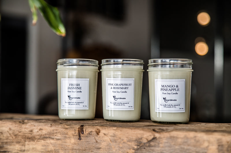 Fresh Jasmine Soy Candle - 8 oz, 50+ hours of Clean Burning