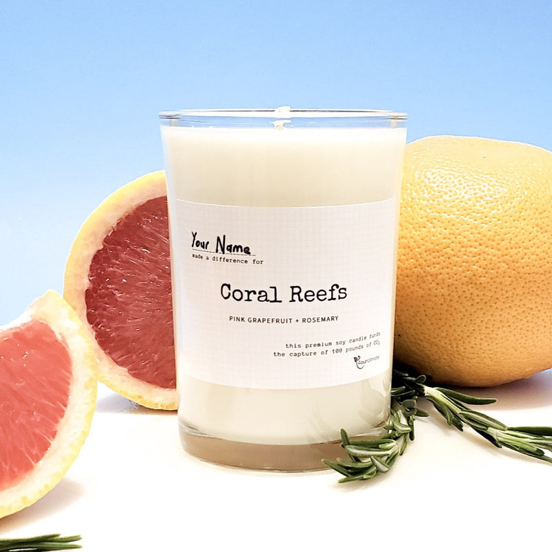 Coral Reef Soy Candle - 8.5 oz Pink Grapefruit & Rosemary Scented in Clear Glass, 65+ Hours of Clean Burning