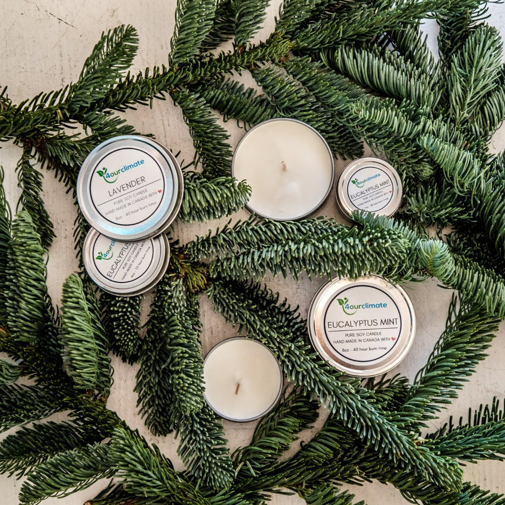 Eucalyptus Mint Soy Candle - 2-oz, 18+ hours of Clean Burning