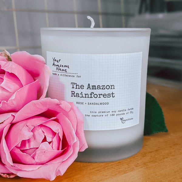 Amazonia Conservation Soy Candle - 8.5 oz Rose and Sandalwood Scented in Frosted Glass