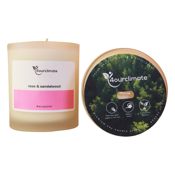 Rose Sandalwood Soy Candle - 8.5 oz Frosted Glass, 65+ Hrs Limited Edition