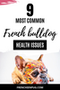 9 Most Common French bulldog health issues