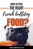 How to pick the right French bulldog food?
