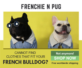 Frenchie N Pug