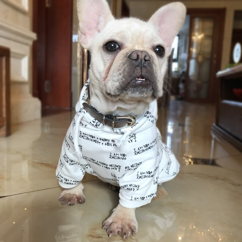 Printed Cotton Hoodies - Frenchie N Pug