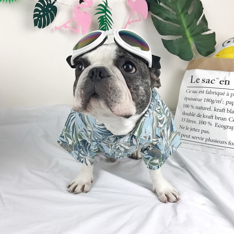 Summer Cool Breathable Hawaii Style Cute Shirt - Frenchie N Pug